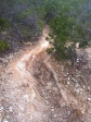 Noumea single track- tough uninjured.